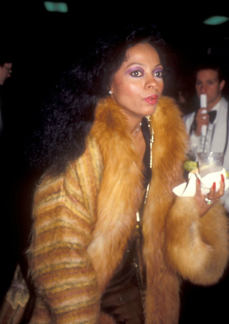 8dianaross_beautylooks_08.jpg