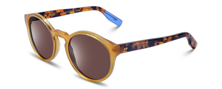 6-sunglasses-fall2016-01.jpg