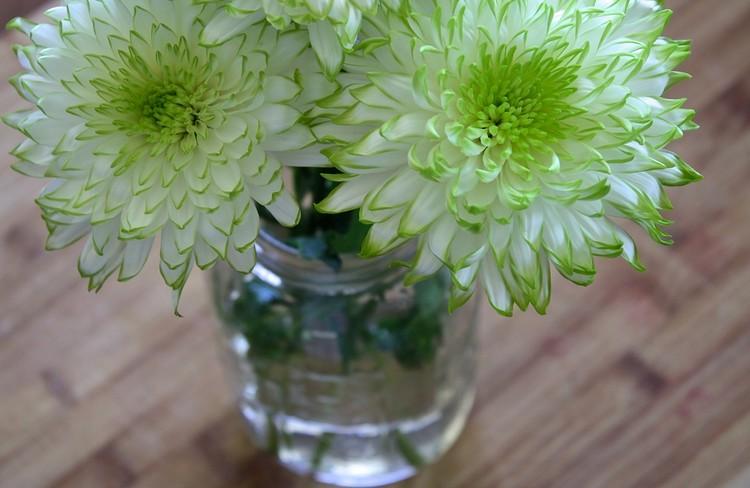 flowerin.jpg